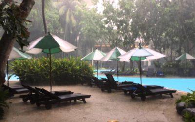 An Entertaining Rainy Season